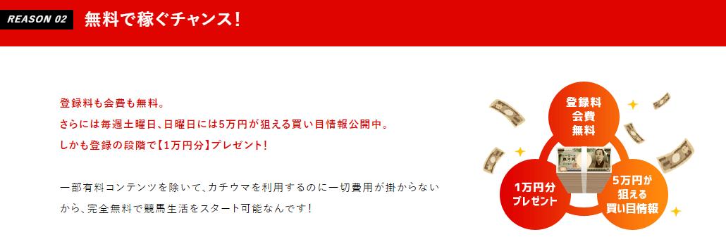 カチウマ_特徴02