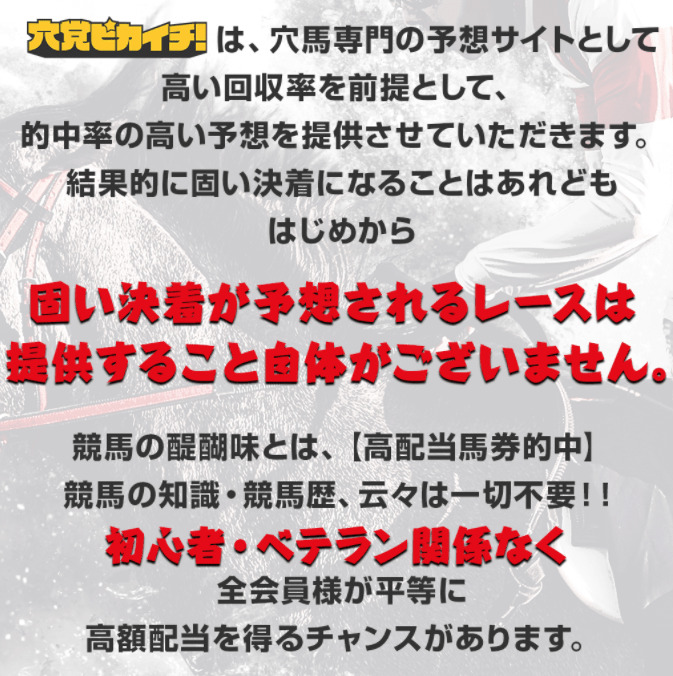 穴党ピカイチ_特徴01