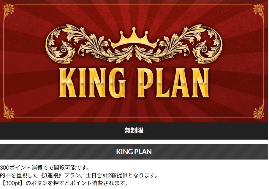 ウマニキ_有料情報_KINGPLAN
