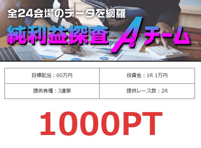 競艇バイキング_有料情報_純利益探査Aチーム